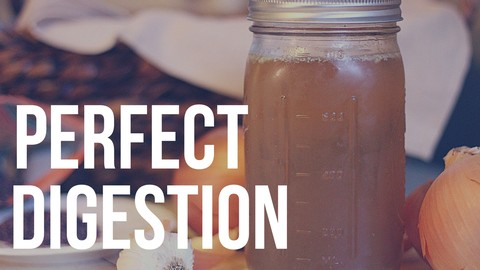 Netcurso-intro-to-perfect-digestion