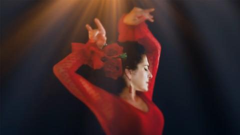 An Introduction to Flamenco Dance