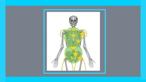 Netcurso-curso-osteopatia-y-terapia-manual