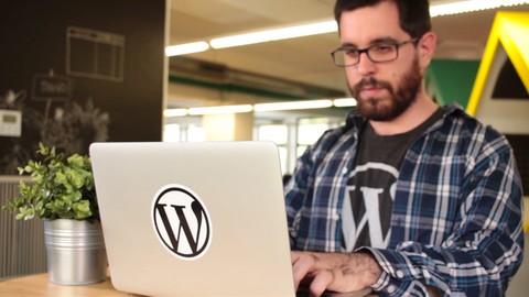 Netcurso-curso-wordpress-profesional