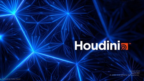 Learning VFX: Complete Houdini Bootcamp