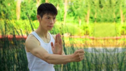 Netcurso-wing-chun-form-level-1-siu-lim-tao-free