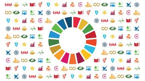 Netcurso-introduction-sustainable-development-goals