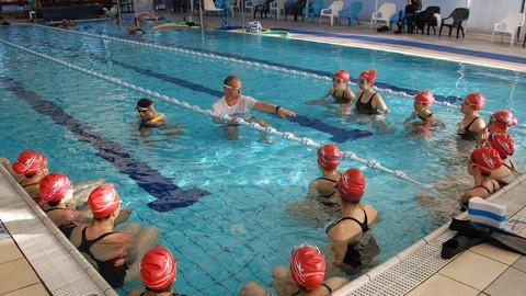 Netcurso-basic-freestyle-west-swimming-technique