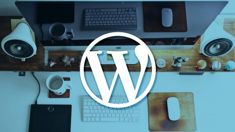 Netcurso-getting-started-with-wordpress-a-beginners-guide