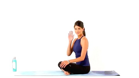 Free Yoga Tutorial - Yoga for Beginners - SarahBethYoga
