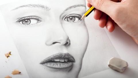 Netcurso-the-secrets-to-drawing