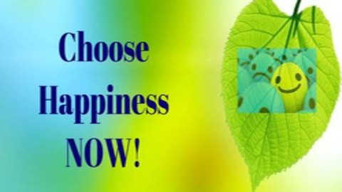 Netcurso-choose-happiness-now-the-course