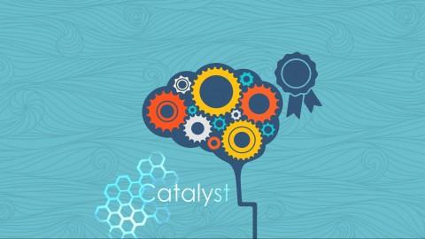 Netcurso-innovation-catalyst-certification-elearning