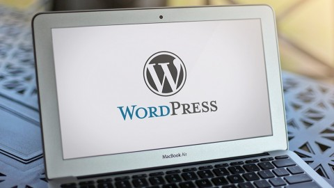 Move A Wordpress Website from Local to Live