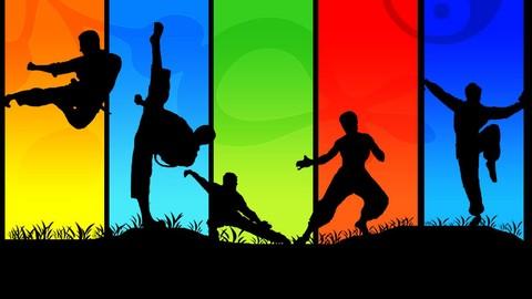 Netcurso-martial-arts-basic