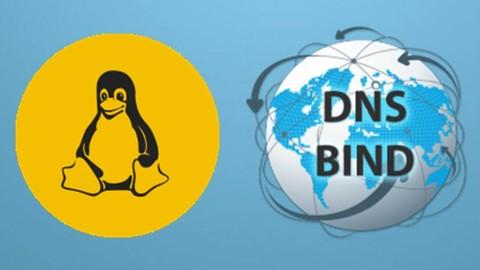 Basics of BIND DNS Server
