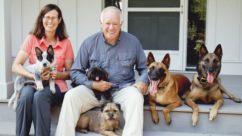 Netcurso-simple-solutions-for-managing-your-dog-indoors