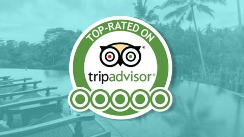 TripAdvisor Domination For Hospitality & Hotel Management