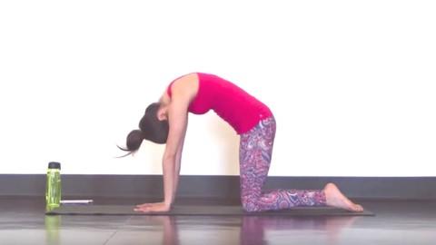 Netcurso-yogaforscoliosis