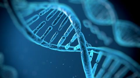 Biotechnology Law: GMOs to Designer Babies