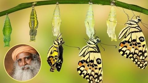 Isha Kriya: A Powerful Meditation for Self Transformation