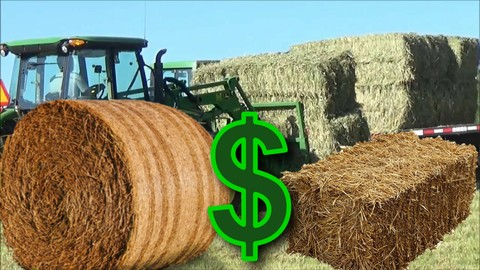 Netcurso-how-to-start-a-successful-hay-bale-business-master-class