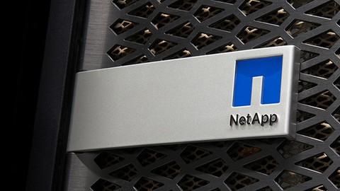 NetApp Storage Clustered Data Ontap 9.3 - Data Protection