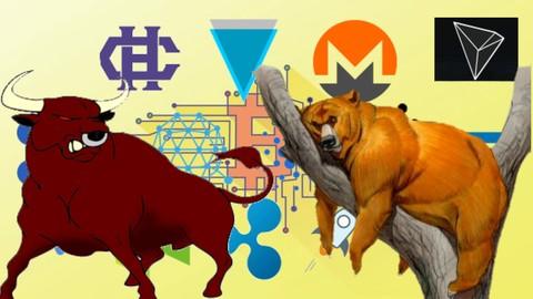 Netcurso-altcoin-crypto-master-class-bull-run-or-bear-market