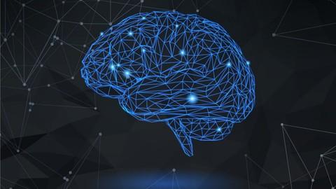 Neuroplasticity Masterclass: Unleash The Power Of Your Brain