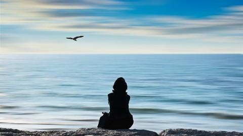 Netcurso-//netcurso.net/fr/apprendre-auto-hypnose-meditation-visualisation-chakra-conscience