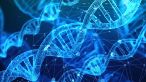 Genetics and Next Generation Sequencing for Bioinformatics