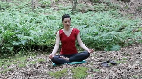 Netcurso-foundation-skills-for-meditation