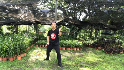 Tai Chi Chen Style 22 for Beginner-Strengthens Mind and Body Coupon