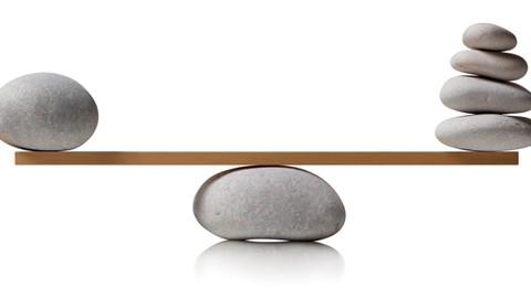 Netcurso-balance-sheet-accounting-equation
