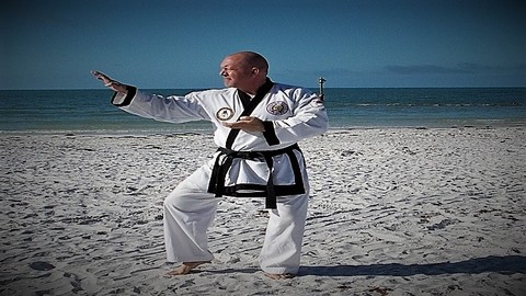 Karate;  Tang Soo Do Techniques & Forms - Beginner Part One