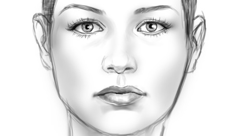 Foundation for Digitally Sketching a Face