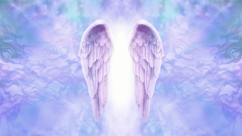 Netcurso-basic-angel-connection-course