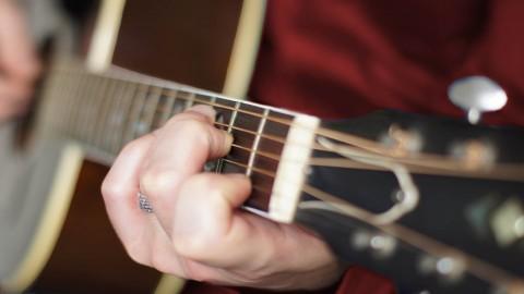 Netcurso-acoustic-guitar-basics