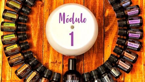 Mobirise