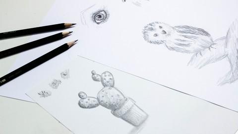 Netcurso-zeichnen-masterclass-lerne-zeichnen-in-nur-6-wochen
