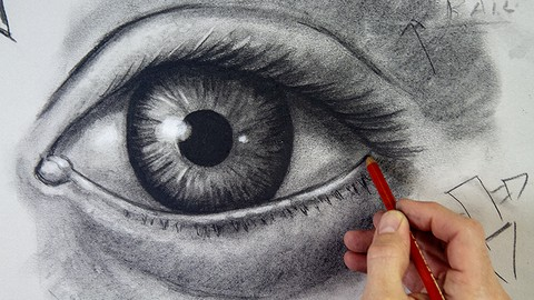 The Complete Drawing Masterclass: From Beginner to Advanced