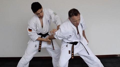Kyokushin Karate lessons