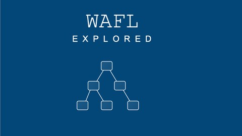 Netapp ONTAP WAFL explored