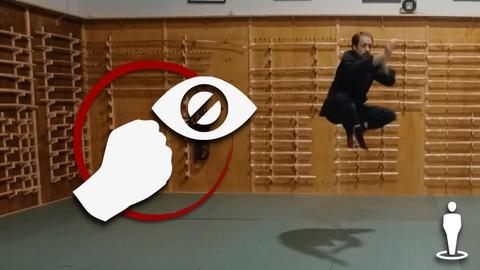 Martial Arts - Ninjutsu - Secret Fighting Foundation