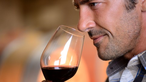 Wine: Everything You Want to Know, Taught by a Winemaker