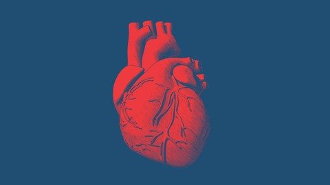 Netcurso-biomarkers-and-diagnosis-of-heart-failure
