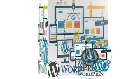 Netcurso-beginner-guide-to-wordpress