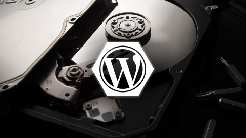 Netcurso-wordpress-backup-and-restore-fundamentals
