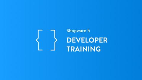 Netcurso-b2b-suite-developer-training-english