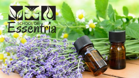 Netcurso-introduction-to-essential-oils