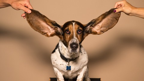 Netcurso-ear-training-starts-here-identify-the-notes