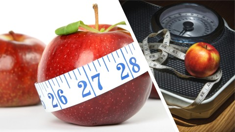 How To Lose Weight With A Busy Lifestyle