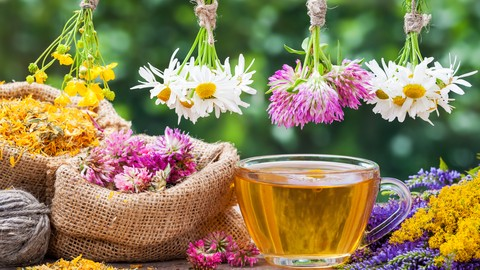Accredited Aromatherapy Training - Essential Oils
