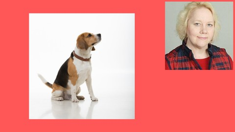 Dog Training; Dog Behavior; Research Backed Approach